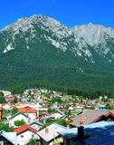 Busteni. City - view on a summer day Stock Image