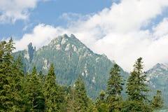 busteni krajobrazowy Romania Zdjęcia Royalty Free