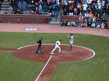 Buster Posey touches homeplate after homering Royalty Free Stock Image
