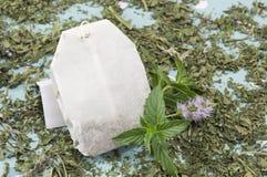 Bustina di tè della menta e pianta della menta fresca Immagine Stock