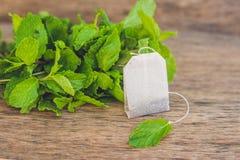 Bustine di tè su fondo di legno con melissa fresca, menta Tè con il concetto della menta Immagine Stock