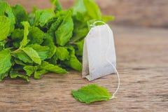 Bustine di tè su fondo di legno con melissa fresca, menta Tè con il concetto della menta immagine stock libera da diritti