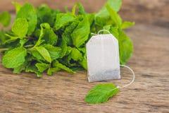 Bustine di tè su fondo di legno con melissa fresca, menta Tè con il concetto della menta Fotografie Stock