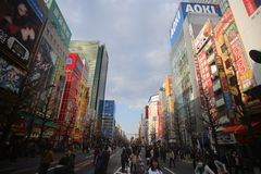 Bustling Akihabara Royalty Free Stock Photo
