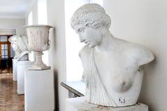 Busto antigo da escultura de uma mulher na galeria fotografia de stock royalty free
