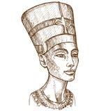 Busto de la mano de Nefertiti dibujado ilustración del vector