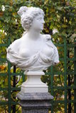 Busto de mármol en el jardín del verano Fotos de archivo libres de regalías