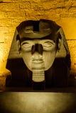 Busto di Rameses II Immagine Stock