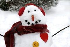 Busto di un pupazzo di neve Immagini Stock Libere da Diritti