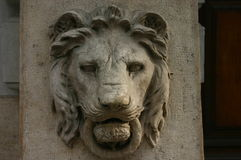 Busto principal do leão (escultura) imagem de stock