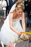 Busty bride sawing low with saw. Blonde busty bride with diadem and veil is sawing with a saw a log on her wedding ceremony. this wood sawing is a tradition in Royalty Free Stock Images