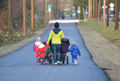 Busy Babysitter and Children. A babysitter or nanny takes her children for a walk stock photos