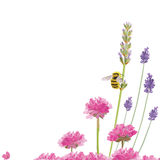 Busy bee Stock Images