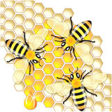 Busy Bees Royalty Free Stock Image