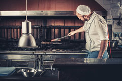 Restaurant Kitchen Photography busy chef at work in the restaurant kitchen stock photo - image