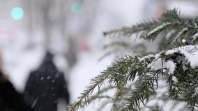 A busy city during a snowfall. Spruce with garland in the foreground stock video