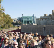 Busy crowds London Poppy Exhibition. Lots of people visiting remembrance day memorial in London stock image