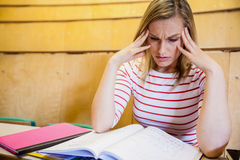 Busy female student studying Stock Photography