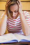 Busy female student studying Stock Images