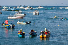 Busy fishermen in the morning along a beach shore Stock Image