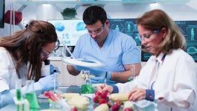 Busy food genetics laboratory