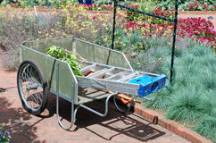 Busy in the Garden. Gardner takes a rest from working in raised flower beds.  The cart holds clippings, a ladder and other gardening equipment Stock Photography