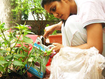 Busy Gardening. A young Indian Girl, busy gardening Stock Image