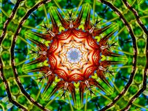 Busy Green and Dry plants made into a kaleidoscope. This magical flower kaleidoscope mandala design was made using an image of a flower vector illustration