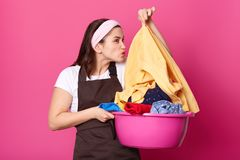 Busy housewife holds basin of dirty clothes, does washing during weekend, smells shirt, dressed in casual apron and headband,. Isolated over pink background royalty free stock images
