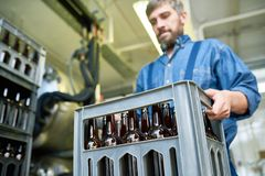 Busy male mover transporting box with beer bottles from plant. Serious busy mover carrying heavy box with beer bottles while working in warehouse and preparing Stock Images