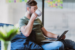 Busy male worker using laptop indoors. Relaxed young man is drinking coffee while looking at his computer with concentration. He is sitting on couch in office Royalty Free Stock Photos