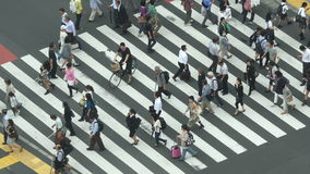 Busy Pedestrian Street Crossing From Above  - Shibuya, Tokyo Japan stock footage