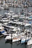 Busy Pleasure Craft Marina Stock Photography