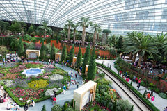 Busy scenic inside of Garden by the Bay, Singapore Royalty Free Stock Image