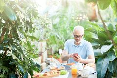 Messaging among plants Royalty Free Stock Photo
