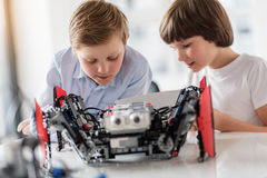 Busy smiling children checking technical toy. Concentrated small boys are reading instruction of using given robot. They sitting near table royalty free stock image