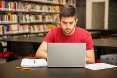 Busy student using a laptop Royalty Free Stock Image