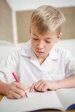 Busy students working on class work. At the elementary school Royalty Free Stock Image