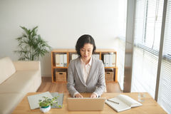 busy work 免版税库存照片