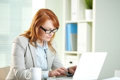 Busy working. Pretty business lady being busy working on laptop Stock Image