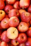 Buszel czerwoni jabłka zdjęcia royalty free