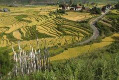 Butão, Punakha, Imagens de Stock Royalty Free