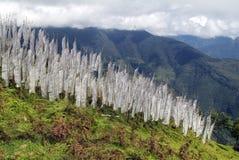 Butão, Trashigang, Imagens de Stock Royalty Free