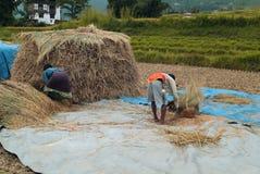 Butão, Wangdi Phodrang Foto de Stock