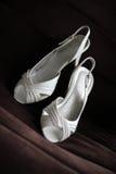 butów target1328_1_ Zdjęcie Stock