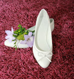 butów target655_1_ Zdjęcia Royalty Free