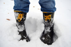 buta śnieg obraz royalty free