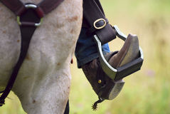 buta kowbojski konia s ostroga western fotografia stock