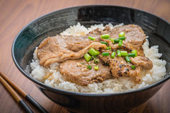 Butadon, roasted pork with japanese rice in bowl Stock Photo
