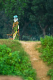 Butanese Woman. Worker wearing traditional clothing. she is carrying large pot on head Stock Photo